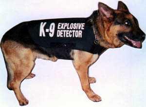 Bulletproofme Com Body Armor Canine Vests